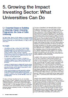 Article_Clark_EssentialStepsToBuildingAUniversity ImpactInvestingProgramme_2014_thumbnail